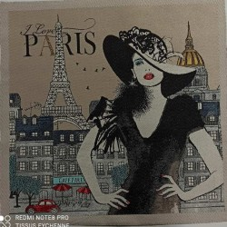Coupon Chic Paris Audrey 47x47cm